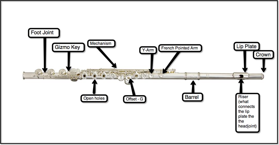 flutepartslabeled3?w\\\\\\\=640\\\\\\\&h\\\\\\\=333 flute keys diagram wiring diagrams thumbs